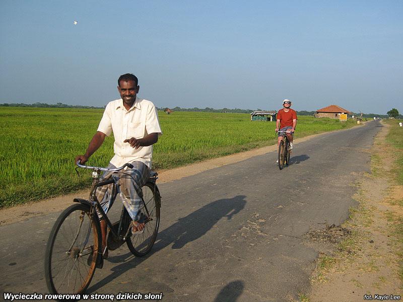 Wycieczka rowerowa w stronę dzikich słoni.