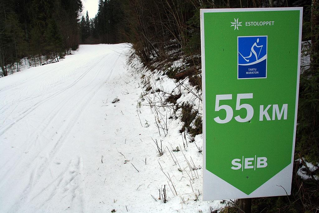 Niedzielna 15-km wycieczka częścią szlaku Tartu Ski Maraton. Po świetnie przygotowanej trasie dobiegliśmy aż na stadion w Otepaa.