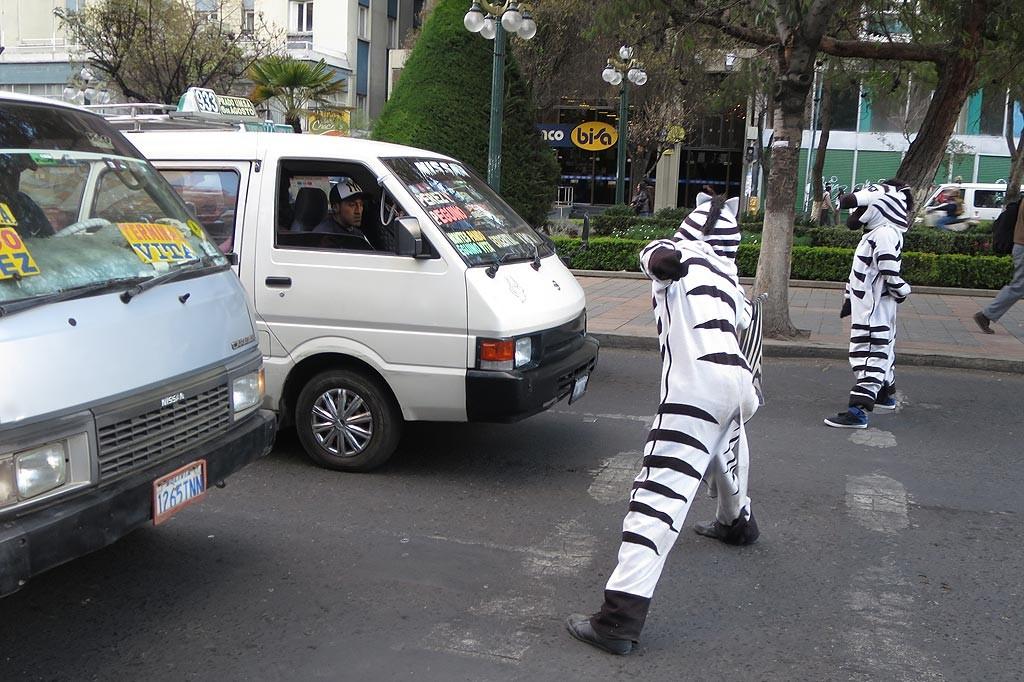 W La Paz i Sucre trwa akcja uswiadamiajaca kierowcom, ze nie wolno jezdzic na czerwonym. Na glownych skrzyzowaniach osoby przebrane za zebry na czas czerwonego wychodza przed auta i blokuja kierowcow mozliwosc lamania przepisow.