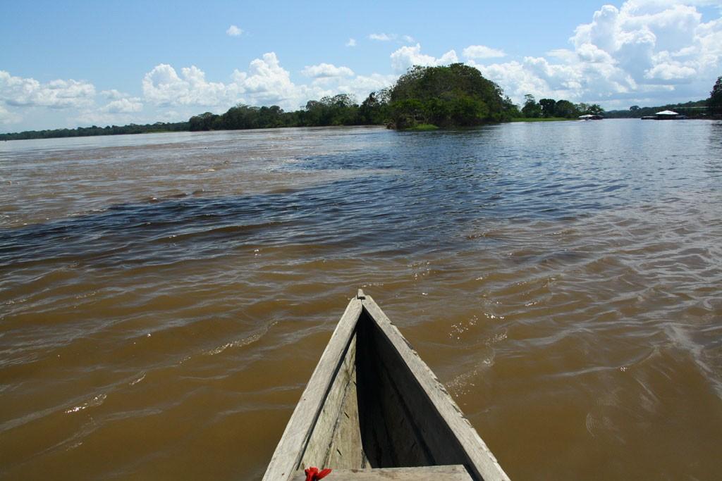 Czarne wody dopływu oraz kawa z mlekiem w Amazonce