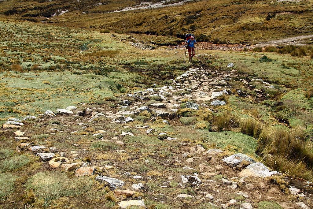 Dzień piaty, podejście na Paso Portuachelo (4600 m). Bogna idzie po oryginalnym odcinku drogi inkaskiej.