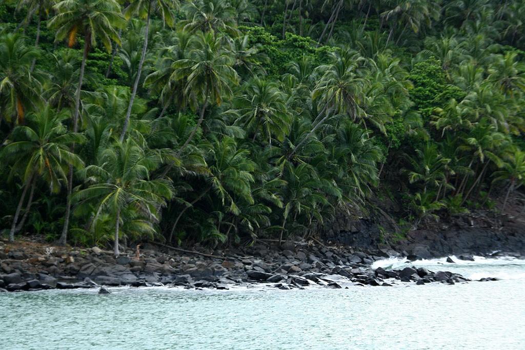Brzegi Île Royale